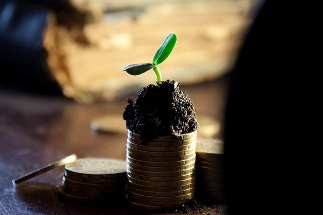 Kreditfinanzierte Aktien müssen solide wachsen. (Quelle: Markgraf-Ave(CC0-Lizenz)/ pixabay.com)