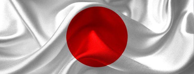 Welche Aktien bzw. Unternehmen sind im Nikkei?