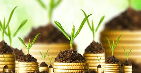 Nachhaltiges und ethisches Investieren – Teil 5: Nachhaltigkeits- und Öko-Indices