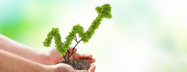 In welchen Fonds investieren? – So kommen Sie an die richtigen Informationen!
