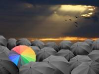 3 Möglichkeiten Aktien gegen Kursverluste abzusichern