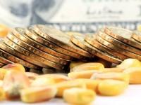 Ist die vermeintliche Sicherheit von Gold langfristig zu teuer?