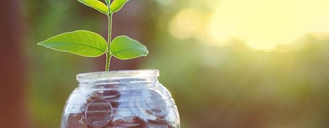 Anzeige: Nachhaltig in Investmentfonds Anlegen mit dem GreenFolio von VisualVest