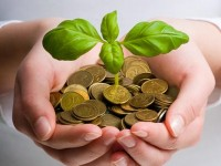 Nachhaltiges und ethisches Investment: Ein paar Dinge, die man als Kleinanleger unbedingt wissen sollte