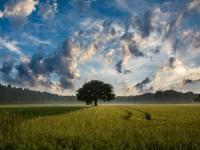 Der Klimawandel und seine Auswirkungen auf die Finanzwirtschaft